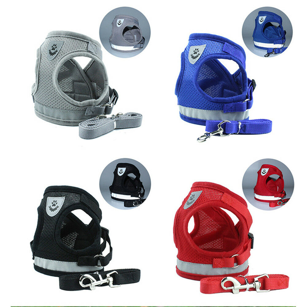 Small Dog Harness Colors