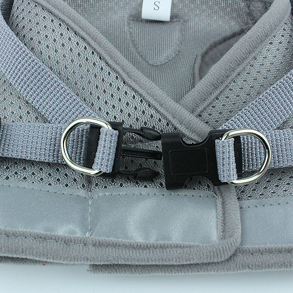 Dog Harness Straps